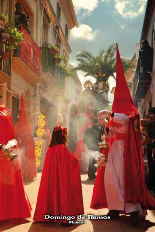 Jesús en su entrada Triunfal en Jerusalén y la Cofradía de Ntra. Sra. del Rosario 1