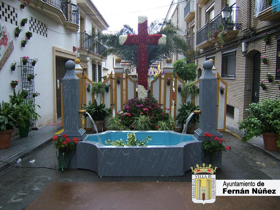 Cruces y Patios 1