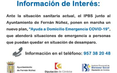 Plan «Ayuda a Domicilio Emergencia COVID-19»