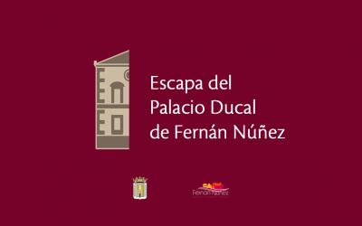 Escapa del Palacio Ducal de Fernán Núñez